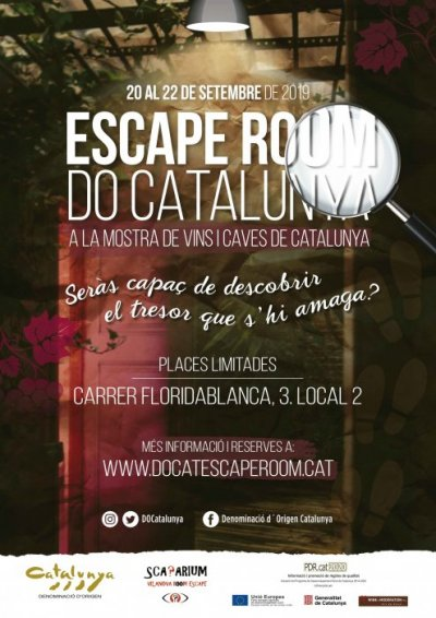 escape room do cat